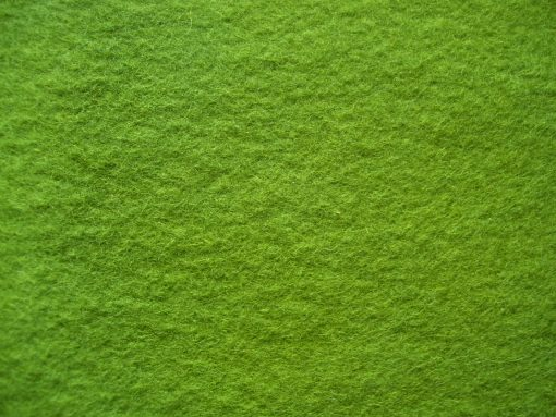 7. Mid green organic plant dyed wool felt sheet