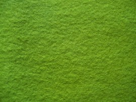 7. Mid green organic plant dyed wool felt sheet