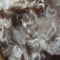 Angora Locks 50g Bag